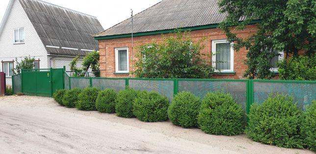 Затишний будинок-дача в с.Свидівок біля лісу 29000$
