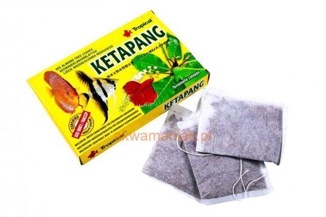 Tropical Ketapang - liście migdałecznika morskiego – naturalny środek