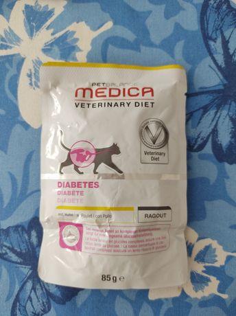 Karma dla kota diabetyka