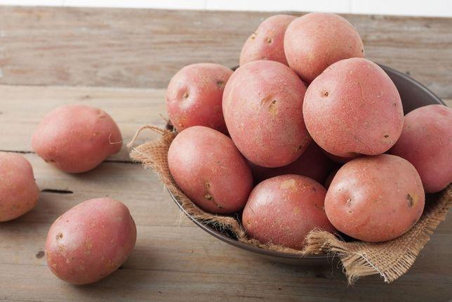 Ziemniaki sadzeniaki kwalifikowane BELLAROSA kl.A DOWÓZ!!!