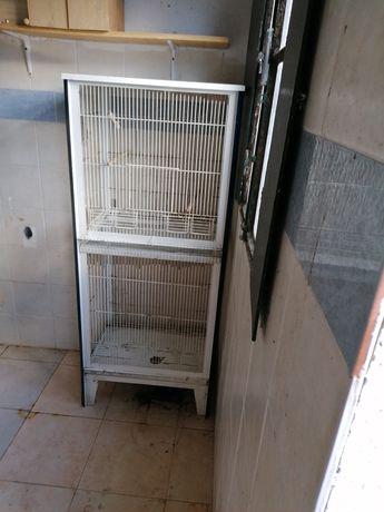 Viveiro e gaiolas de criação de canários