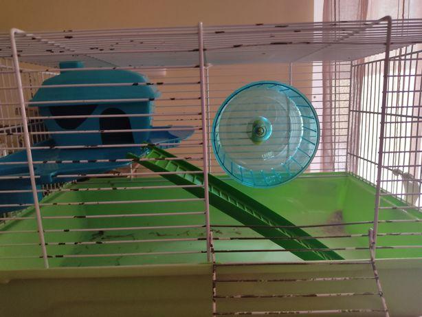Conjunto para hamster
