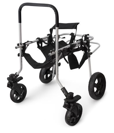 Wózek dla niepełnosprawnego psa