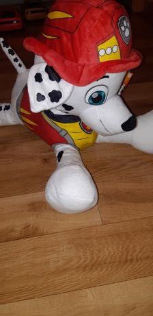 Pies Marshall psi patrol maskotka 60cm xxl