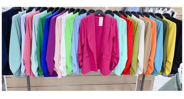 Blazers Senhora Várias cores