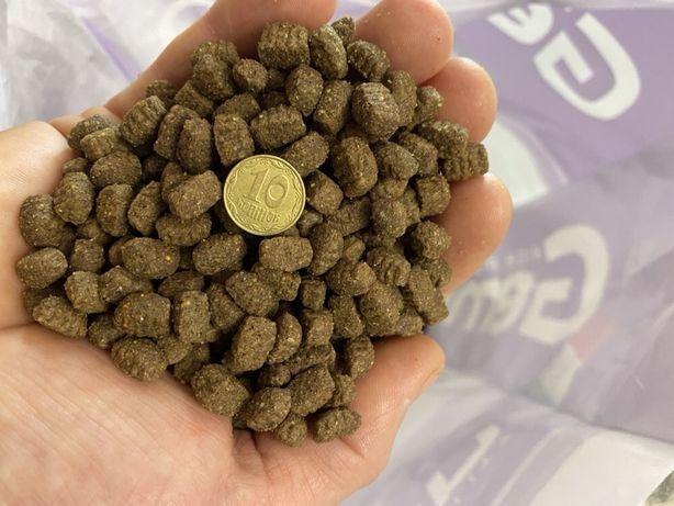 Сухой корм для собак мелких и средних пород Gemon