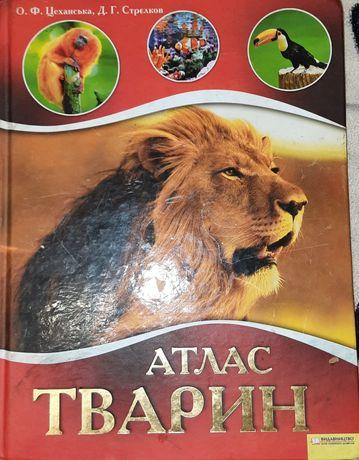 Атлас тварин (О.Ф.Цеханська, Д.Г.Стрєлков)
