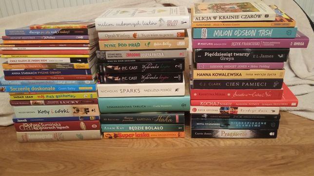 Prawie 50 książek Sumińska romanse powieści młodzieżówki psy tanio