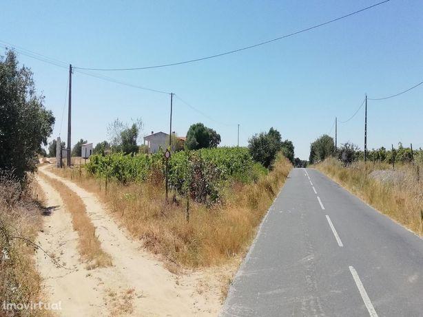Agricultural land/Land em Beja, Cuba REF:7166
