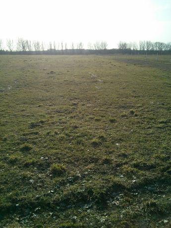 Działka rolna 4,80 h