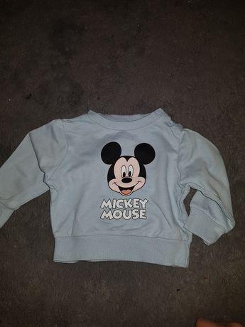 bluza dla chlopca myszka miki r.62 sinsay