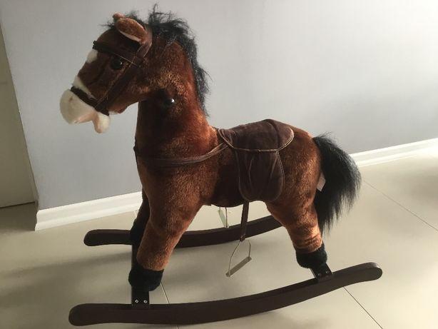 Koń na biegunach, konik na biegunach