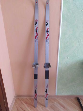 Лыжи, пластик Телеханы