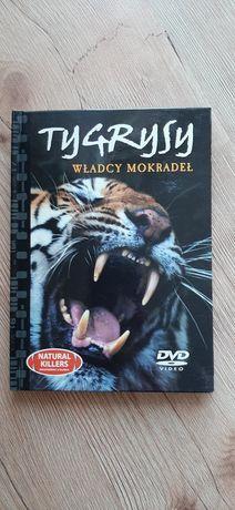 Zestaw łączony film DVD + książka Tygrysy władcy mokradeł