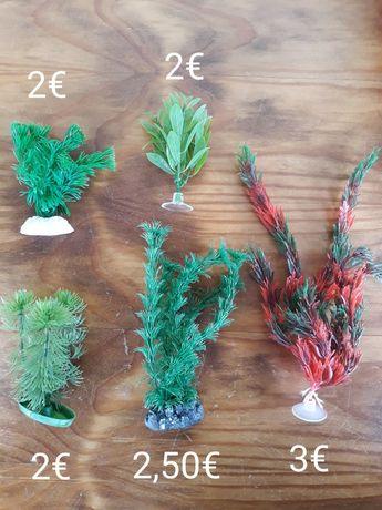 Plantas Decoração Aquário