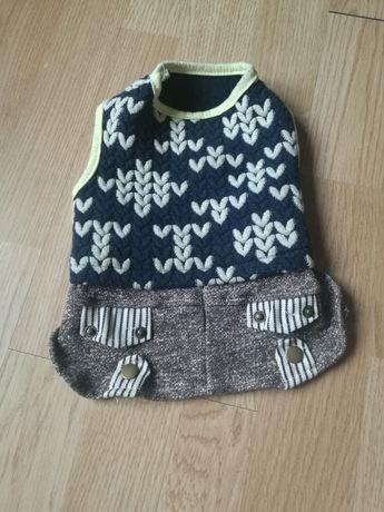 Ubranka dla pieska