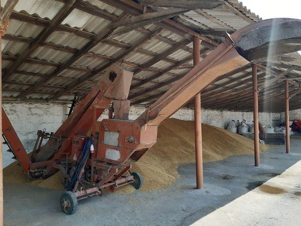 Навантажувач  зерновий ЗМ-60