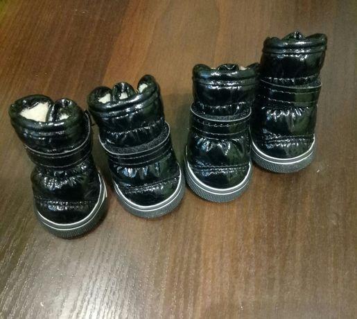Зимние ботинки для маленьких собак (Йорк, той-терьер и т.д.)
