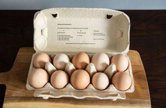Swojskie jaja kurze