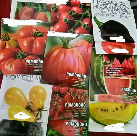 Nasiona na sztuki pomidory, bakłażany, arbuzy i wiele innych