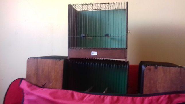 klatki wystawowe dla kanarków i ptaków egzotycznych