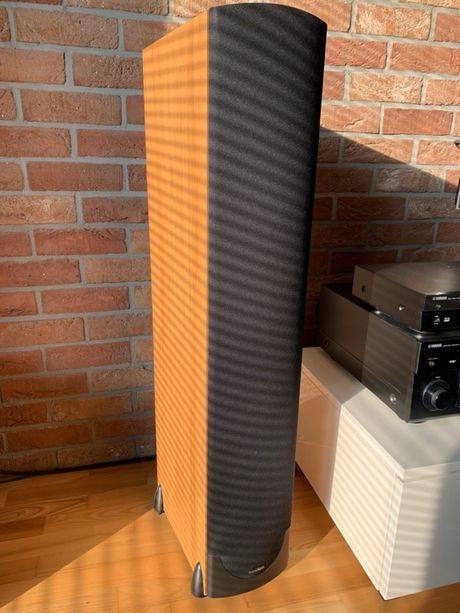 Kolumny podłogowe Paradigm Monitor 9 V6
