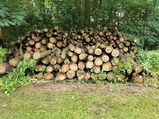 Drewno czereśniowe