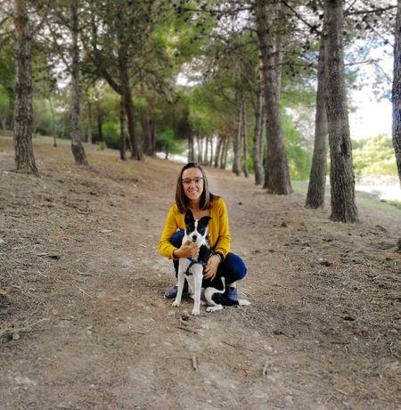 Dog Walking; Pet Sitting; Pet Taxi