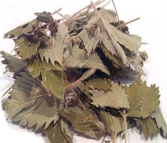 Клубника лист сухой
