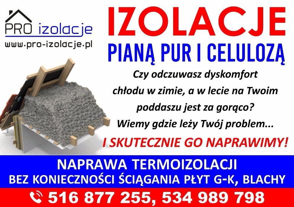 Zwalczanie kuny domowej Wdmuchiwanie celulozy Kuna na poddaszu Kazimierza Wielka - image 1