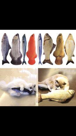 Рыбка для котика