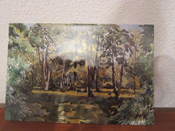 Postal Floresta Bosque