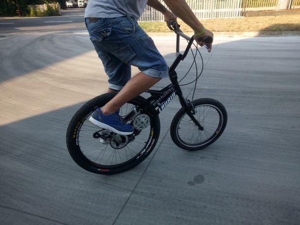 Erectus bike