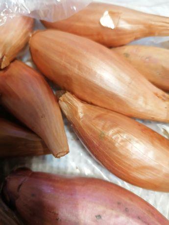 Продам цибулю - семейку для засівання на зиму. По ціні 30 грн за кг.