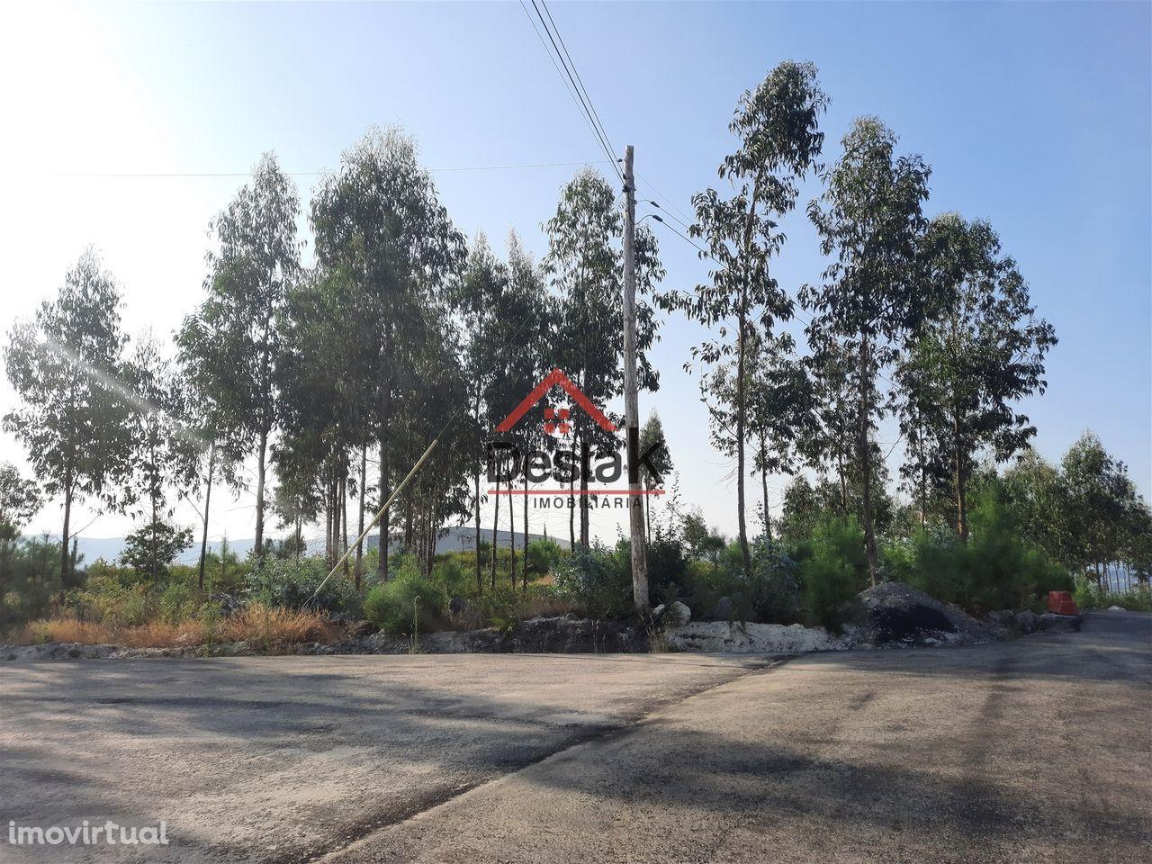 Terreno para construção em Campia
