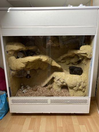 Terarium dla agamy, gekona
