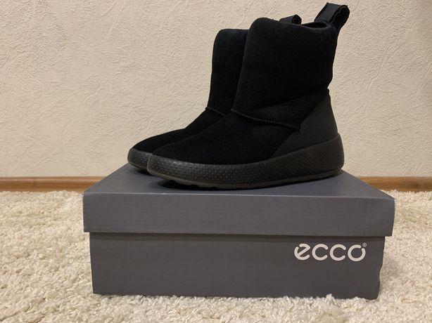 Сапоги женские зимние 38 брендовые ECCO