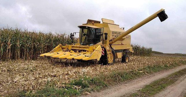 Zbiór kukurydzy, koszenie kukurydzy