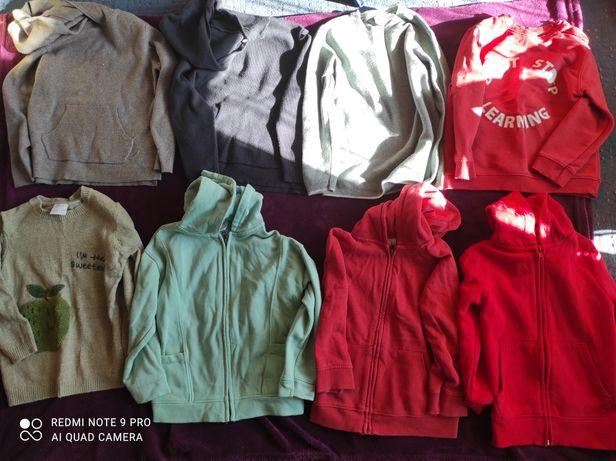 Bluzy i sweterki chłopczyk Zara 110