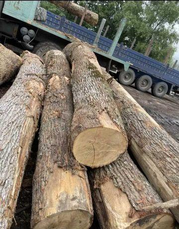 Реализуем дрова твердых пород по низким ценам. Сухостой