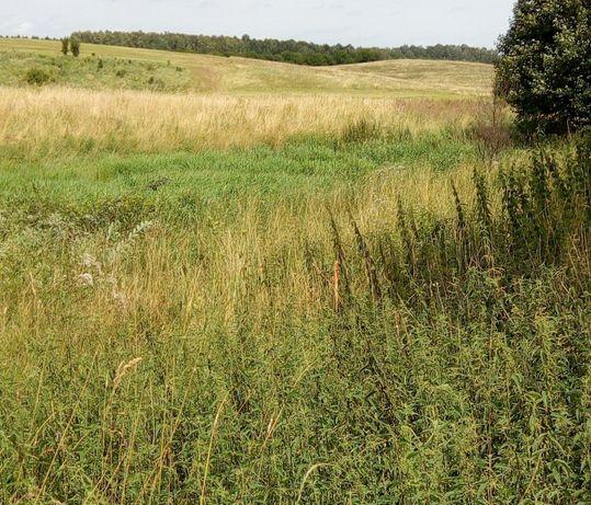 Działka rolna - Kolonia Rybacka