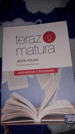 Podręcznik teraz matura vademecum