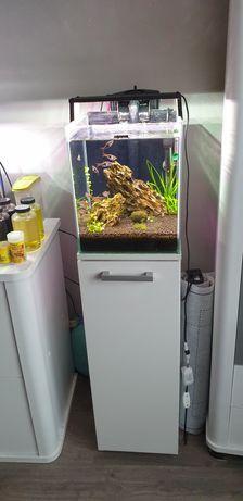 Akwarium z szafka