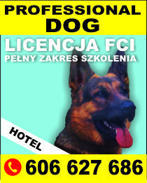 Hotel dla psów Wrocław