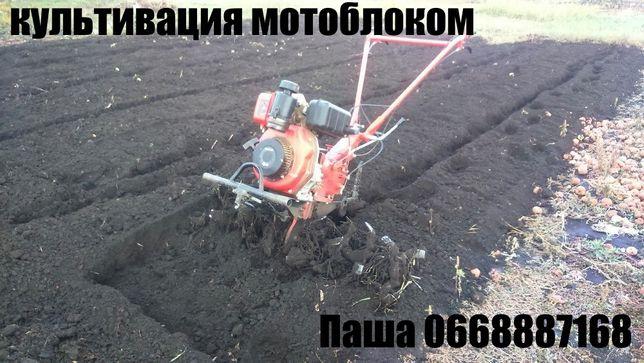 Культивация огорода мотоблоком