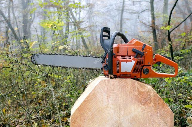 Пилим дрова дкревья