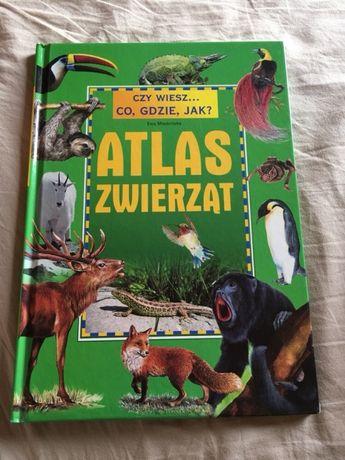 """""""Czy wiesz... Co, Gdzie, Jak? Atlas zwierząt"""" - Ewa Miedzińska"""