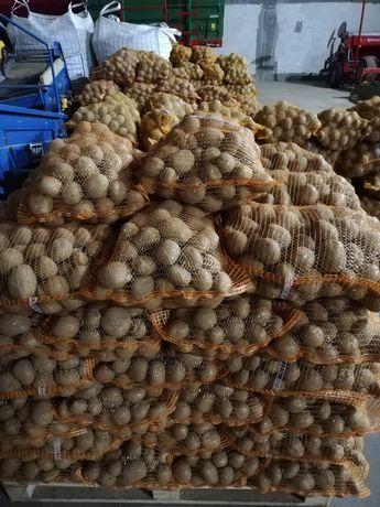 Ziemniaki jadalne * VINETA *