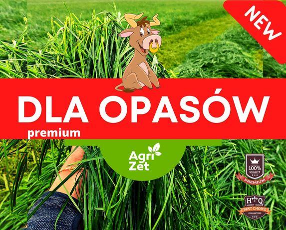 Mieszanka trwa / dla opasów / bydła /nasiona traw GRATISY!
