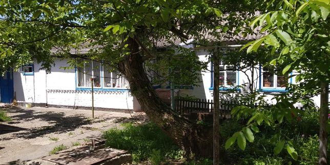 Приватний будинок в м. Тетіїв